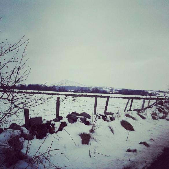 Snow, snow, and some snow.