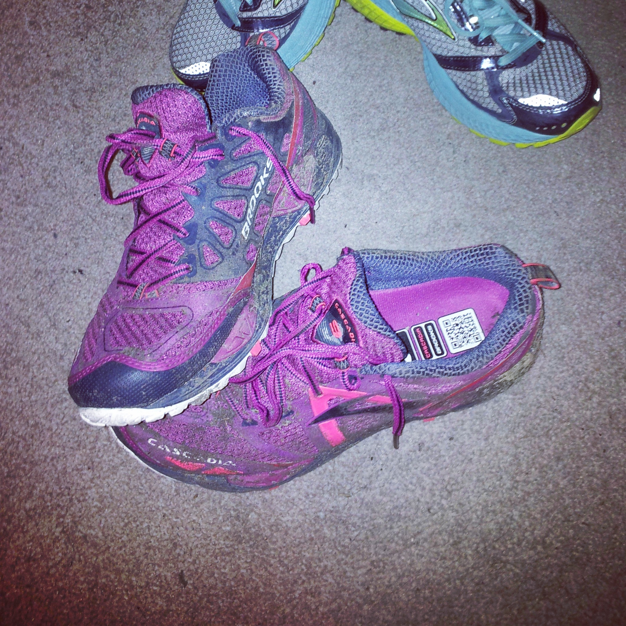 3afd96710946d Review  Brooks Cascadia 9