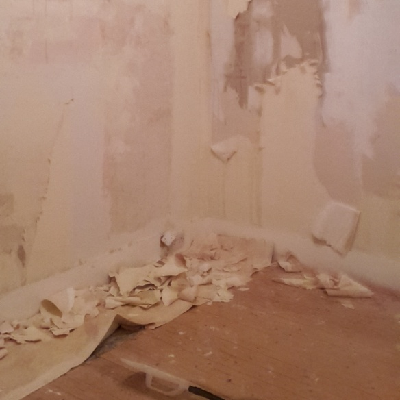 Stripping - the less exciting kind.